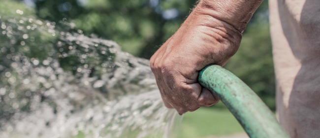Hand Watering Allowed Every Day